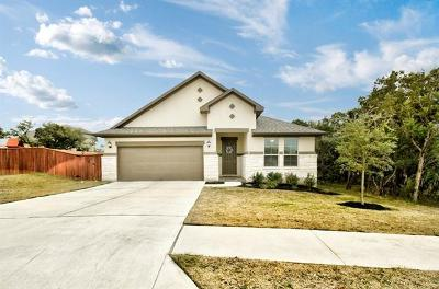 Bee Cave Single Family Home Pending - Taking Backups: 16033 Villa Frontera Dr