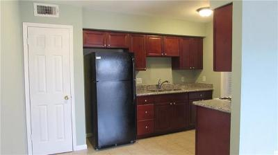 Austin Rental For Rent: 2206 Mission Ci Dr #102
