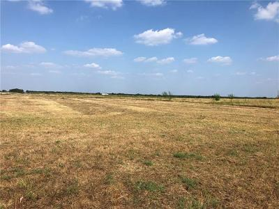 Bell County, Burnet County, Coryell County, Lampasas County, Llano County, McLennan County, Mills County, San Saba County, Williamson County Farm For Sale: Tract 23 Cr 463