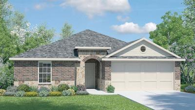 Kyle Single Family Home For Sale: 164 James Adkins Dr