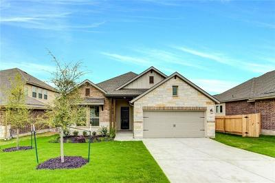 Pflugerville Single Family Home For Sale: 20821 Sand Lark Ln