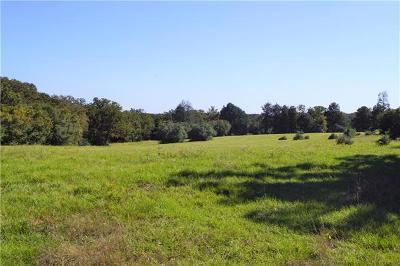 Farm For Sale: 972 Paint Creek Rd