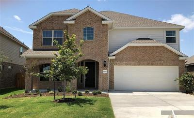 Pflugerville Single Family Home For Sale: 21008 Abigail Way