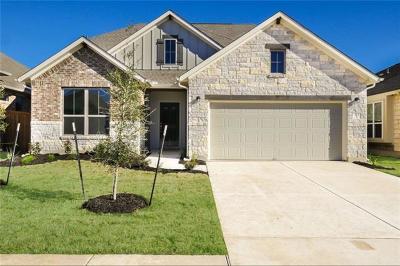 Liberty Hill Single Family Home For Sale: 313 Vista Portola Loop