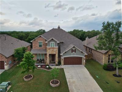 Round Rock Single Family Home For Sale: 3873 Skyview Way