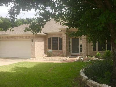 Cedar Park Single Family Home For Sale: 1106 Antelope Rdg
