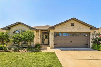 Leander Single Family Home For Sale: 914 Washburn Dr