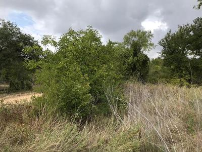 Bartlett TX Residential Lots & Land For Sale: $22,000