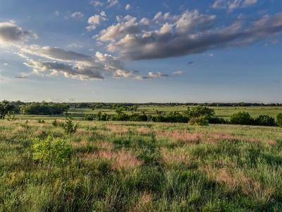 Bell County, Burnet County, Coryell County, Lampasas County, Mills County, Williamson County, San Saba County, Llano County Residential Lots & Land For Sale: Lot 1 Fm 963