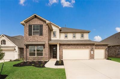 Hays County Single Family Home For Sale: 508 Academy Oaks Drive