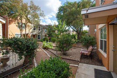 Austin Rental For Rent: 1101 Grove Blvd #201