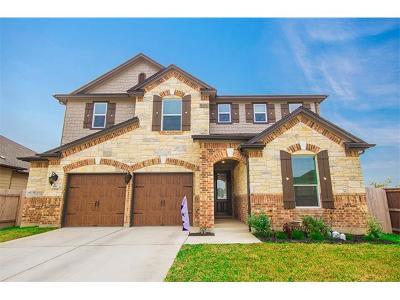 Buda, Kyle Single Family Home For Sale: 281 Fender Dr