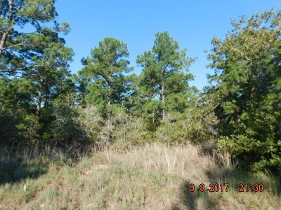 Residential Lots & Land For Sale: 0.44 Acres Briar Forest