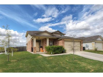 New Braunfels Single Family Home For Sale: 723 Spectrum Dr