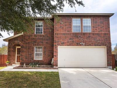 Kyle Single Family Home For Sale: 550 Whispering Hollow Dr