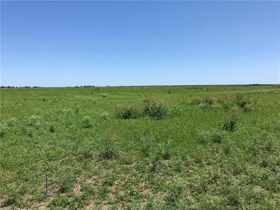 Bell County, Burnet County, Coryell County, Lampasas County, Llano County, Mills County, San Saba County, Williamson County, Hamilton County Residential Lots & Land For Sale: Lot 9 County Road 434