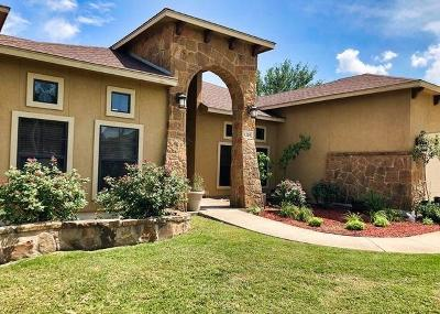 New Braunfels Single Family Home For Sale: 1229 Nickel Crk