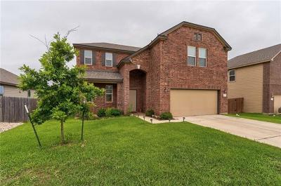 Kyle Single Family Home For Sale: 211 Apricot Dr