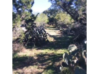 Hays County Residential Lots & Land For Sale: 2713 Leslie Ln