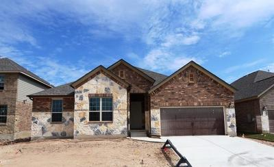 Hutto Single Family Home For Sale: 711 Duroc Dr