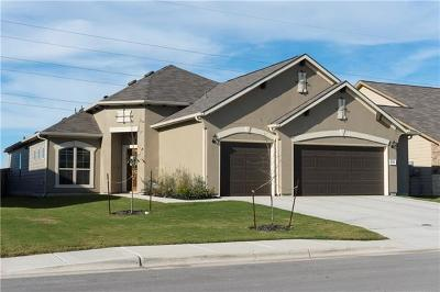 New Braunfels Single Family Home For Sale: 3541 Hurricane Trl