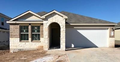 Round Rock Single Family Home For Sale: 5804 San Savino Dr
