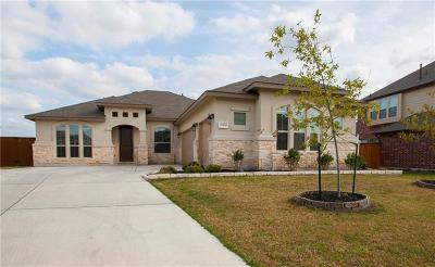 Pflugerville Single Family Home For Sale: 19109 Melwas Way
