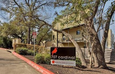 Austin Condo/Townhouse For Sale: 707 Cardinal Ln #C2