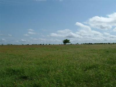 Bertram TX Farm For Sale: $300,000
