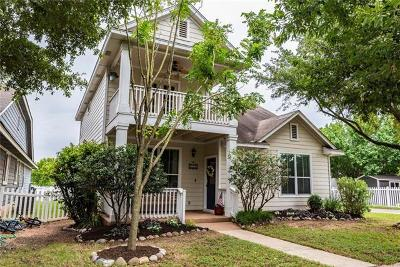 Kyle Single Family Home For Sale: 161 Strawn