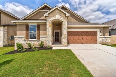 Kyle Single Family Home For Sale: 331 Jarbridge Dr