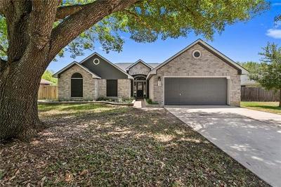 Buda Single Family Home For Sale: 809 Laurel Cv