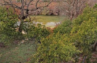 Wimberley Single Family Home For Sale: 510 River Rapids Rd