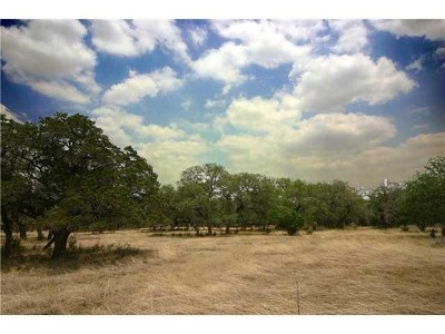 Georgetown Residential Lots & Land For Sale: 109 Estancia Way