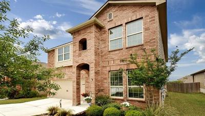 New Braunfels Single Family Home For Sale: 2954 Sawmill Ln