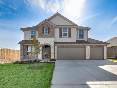 Pflugerville Single Family Home For Sale: 3829 Raven Caw Pass