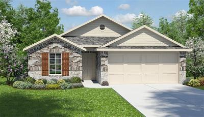 Travis County Single Family Home For Sale: 10604 Speedwagon Run