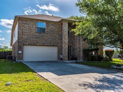 Kyle Single Family Home For Sale: 841 Goldenrod St