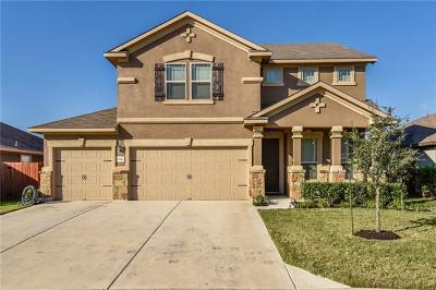 Pflugerville Single Family Home For Sale: 17516 Bridgefarmer Blvd