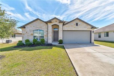 Kyle Single Family Home For Sale: 329 Goddard