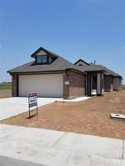 Pflugerville Single Family Home For Sale: 17915 Lungo