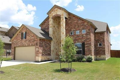 Pflugerville Single Family Home For Sale: 4105 Godwit Dr