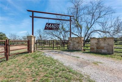 Single Family Home For Sale: 1132 Ranch Road 2233