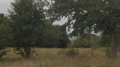 Lampasas TX Farm For Sale: $130,000