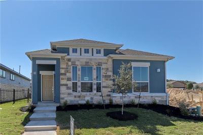 Round Rock Single Family Home For Sale: 2800 Joe Dimaggio Blvd #49