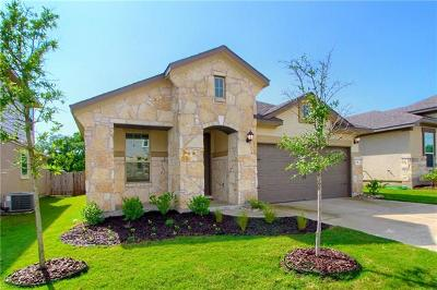 Dripping Springs Single Family Home For Sale: 141 Hunts Link Rd