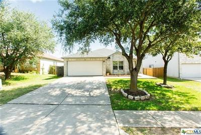 Round Rock Single Family Home For Sale: 1304 Deerhound Pl