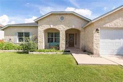 Round Rock Single Family Home For Sale: 19917 San Chisolm Dr