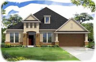 Hays County, Travis County, Williamson County Single Family Home For Sale: 11525 Lake Stone Dr