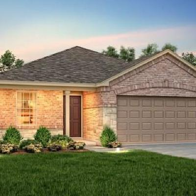 Buda Single Family Home For Sale: 147 Palm Dr